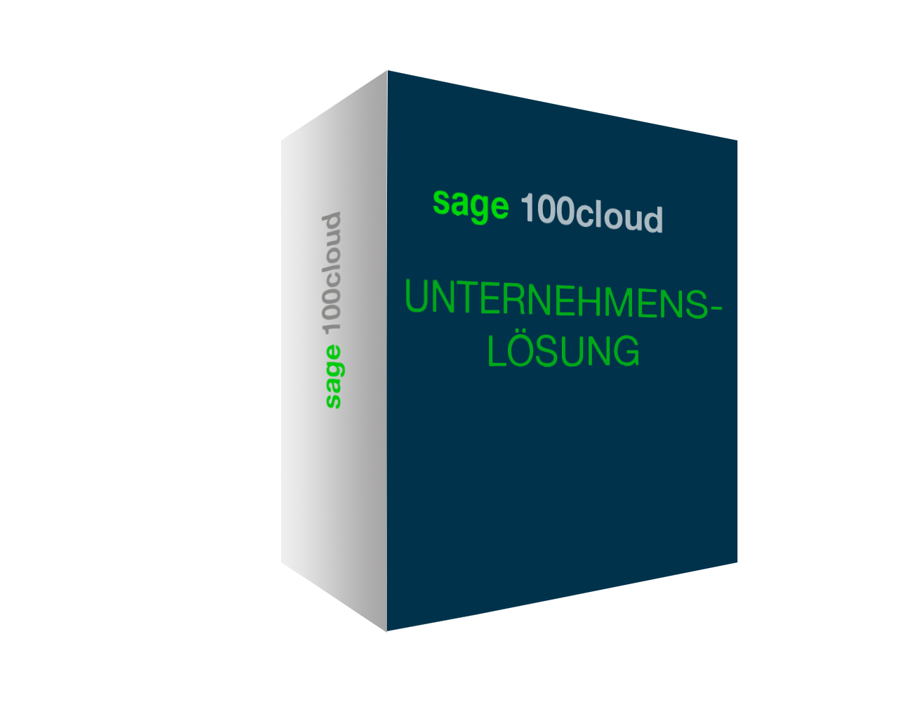 brainsolution Software AG - Sage 100cloud